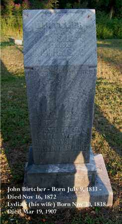 WILDER BIRTCHER, LYDIA S. - Meigs County, Ohio | LYDIA S. WILDER BIRTCHER - Ohio Gravestone Photos