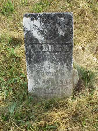 BISSELL, ANDREW - Meigs County, Ohio   ANDREW BISSELL - Ohio Gravestone Photos
