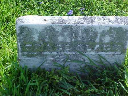 SPENCE, GRACE - Meigs County, Ohio | GRACE SPENCE - Ohio Gravestone Photos