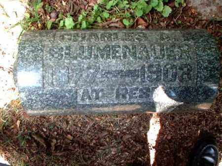 BLUMENAUER, CHARLES A. - Meigs County, Ohio | CHARLES A. BLUMENAUER - Ohio Gravestone Photos
