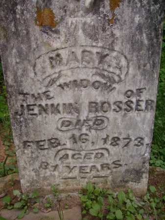 BOOSER, MARY - Meigs County, Ohio | MARY BOOSER - Ohio Gravestone Photos
