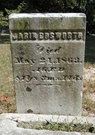 BOSWORTH, JABIN - Meigs County, Ohio   JABIN BOSWORTH - Ohio Gravestone Photos