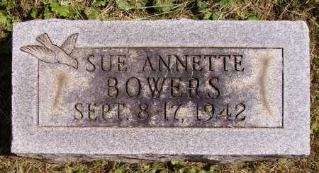 BOWERS, SUE ANNETTE - Meigs County, Ohio | SUE ANNETTE BOWERS - Ohio Gravestone Photos