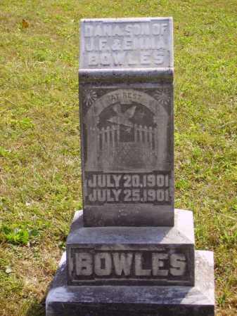 BOWLES, DANA - Meigs County, Ohio | DANA BOWLES - Ohio Gravestone Photos