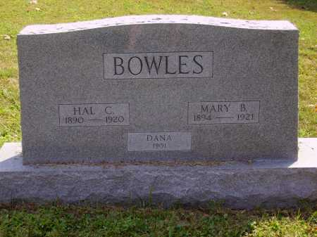 BOWELS, MARY B. - Meigs County, Ohio | MARY B. BOWELS - Ohio Gravestone Photos