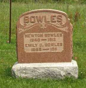 BOWLES, NEWTON - Meigs County, Ohio | NEWTON BOWLES - Ohio Gravestone Photos