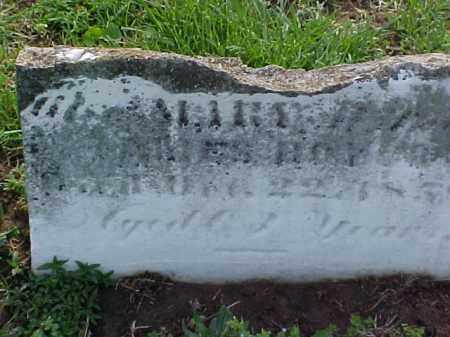 BOYCE, MARY - Meigs County, Ohio | MARY BOYCE - Ohio Gravestone Photos