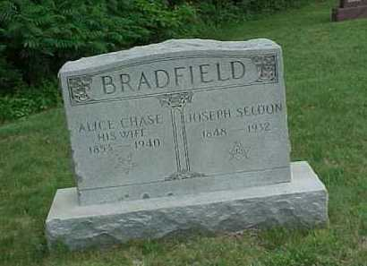 CHASE BRADFIELD, ALICE - Meigs County, Ohio | ALICE CHASE BRADFIELD - Ohio Gravestone Photos