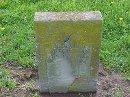 BRADFORD, NATHAN ALLEN - Meigs County, Ohio | NATHAN ALLEN BRADFORD - Ohio Gravestone Photos