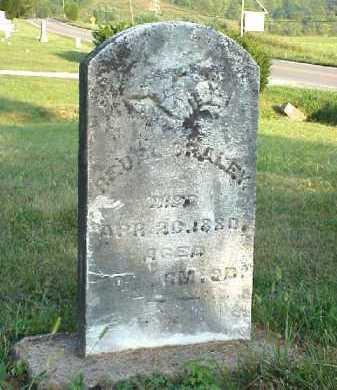 BRALEY, REUEL - Meigs County, Ohio | REUEL BRALEY - Ohio Gravestone Photos