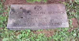 BRENICK, GEORGE - Meigs County, Ohio | GEORGE BRENICK - Ohio Gravestone Photos