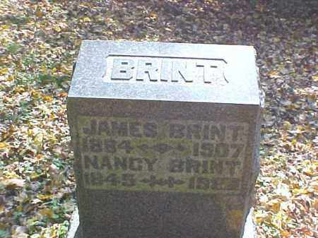 BRINT, NANCY - Meigs County, Ohio | NANCY BRINT - Ohio Gravestone Photos