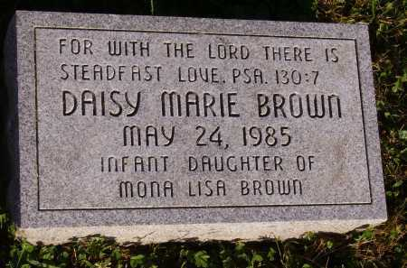 BROWN, DAISY MARIE - Meigs County, Ohio | DAISY MARIE BROWN - Ohio Gravestone Photos