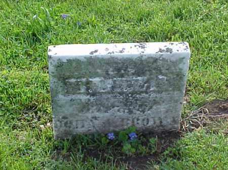 BROWN, ELIZA - Meigs County, Ohio   ELIZA BROWN - Ohio Gravestone Photos