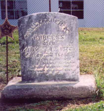 BURGESS, ALEXANDER M. - Meigs County, Ohio | ALEXANDER M. BURGESS - Ohio Gravestone Photos