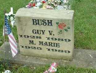 BUSH, GUY V. - Meigs County, Ohio | GUY V. BUSH - Ohio Gravestone Photos