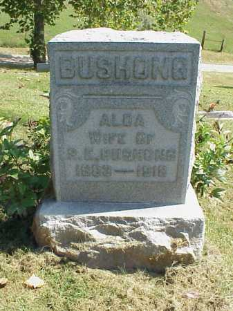 ENTSMINGER BUSHONG, ALDA - Meigs County, Ohio | ALDA ENTSMINGER BUSHONG - Ohio Gravestone Photos