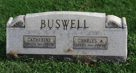 BUSWELL, CHARLES - Meigs County, Ohio | CHARLES BUSWELL - Ohio Gravestone Photos