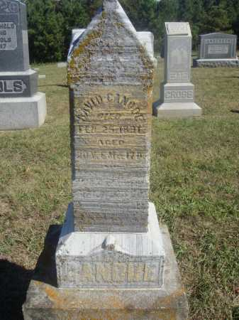 CANODE, DAVID - OVERALL VIEW - Meigs County, Ohio | DAVID - OVERALL VIEW CANODE - Ohio Gravestone Photos