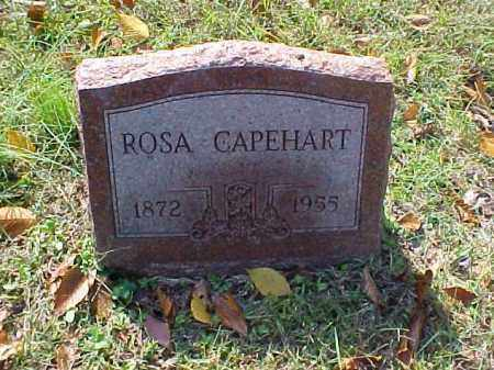 CAPEHART, ROSA - Meigs County, Ohio | ROSA CAPEHART - Ohio Gravestone Photos