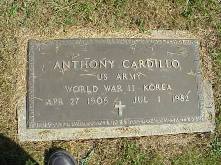 CARDILLO, ANTHONY - MILITARY - Meigs County, Ohio | ANTHONY - MILITARY CARDILLO - Ohio Gravestone Photos