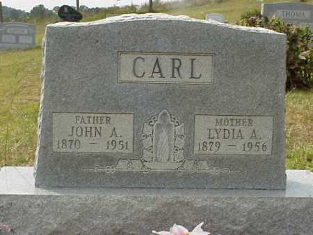 CARL, JOHN A. - Meigs County, Ohio | JOHN A. CARL - Ohio Gravestone Photos