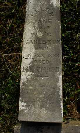CARLETON, ELLEN JANE - Meigs County, Ohio | ELLEN JANE CARLETON - Ohio Gravestone Photos