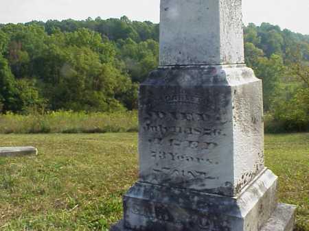 CARLETON, WILLIAM - Meigs County, Ohio | WILLIAM CARLETON - Ohio Gravestone Photos