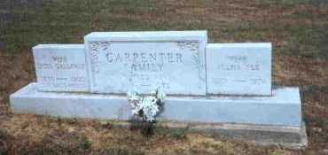 GALLOWAY CARPENTER, OCTA - Meigs County, Ohio | OCTA GALLOWAY CARPENTER - Ohio Gravestone Photos