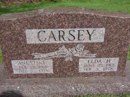 CARSEY, ANESTINE - Meigs County, Ohio | ANESTINE CARSEY - Ohio Gravestone Photos