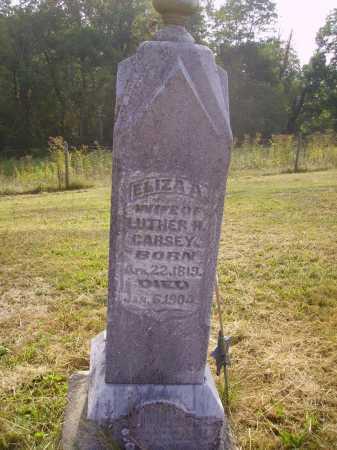 GIBSON CARSEY, ELIZA A. - Meigs County, Ohio | ELIZA A. GIBSON CARSEY - Ohio Gravestone Photos