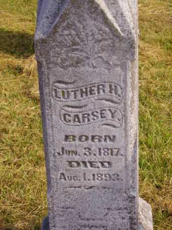 CARSEY, LUTHER H. - CLOSEVIEW - Meigs County, Ohio | LUTHER H. - CLOSEVIEW CARSEY - Ohio Gravestone Photos