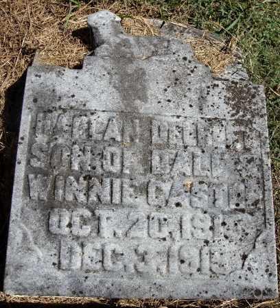 CASTER, HARLAN DELBERT - Meigs County, Ohio | HARLAN DELBERT CASTER - Ohio Gravestone Photos