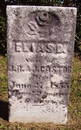 CASTOR, ELIAS D. - Meigs County, Ohio | ELIAS D. CASTOR - Ohio Gravestone Photos