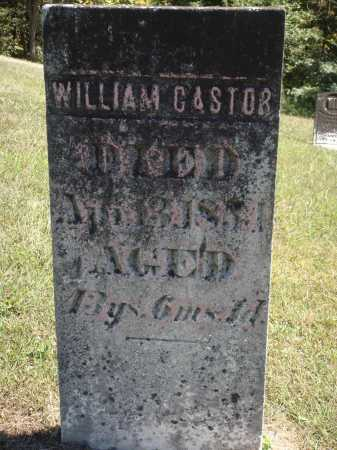 CASTOR, WILLIAM - Meigs County, Ohio | WILLIAM CASTOR - Ohio Gravestone Photos