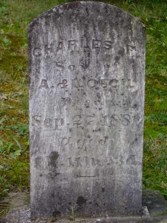 CECIL, CHARLES F. - Meigs County, Ohio | CHARLES F. CECIL - Ohio Gravestone Photos