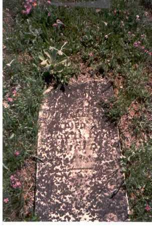 CHAMBERLAIN, AARON - Meigs County, Ohio | AARON CHAMBERLAIN - Ohio Gravestone Photos