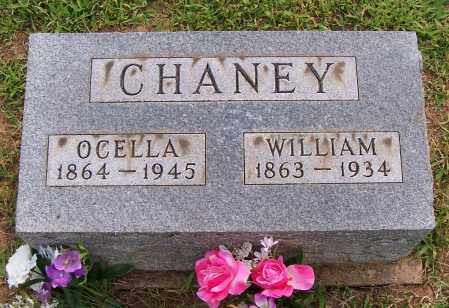 CHANEY, WILLIAM - Meigs County, Ohio | WILLIAM CHANEY - Ohio Gravestone Photos