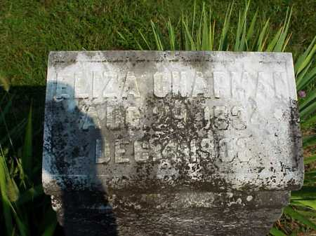 CHAPMAN, CLARISSA ELIZA - Meigs County, Ohio | CLARISSA ELIZA CHAPMAN - Ohio Gravestone Photos