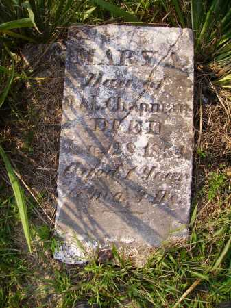 CHAPMAN, MARY A. - Meigs County, Ohio | MARY A. CHAPMAN - Ohio Gravestone Photos