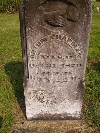 CHAPMAN, ORTON - Meigs County, Ohio | ORTON CHAPMAN - Ohio Gravestone Photos