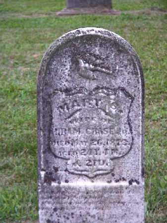 CHASE, MARY S. - Meigs County, Ohio | MARY S. CHASE - Ohio Gravestone Photos