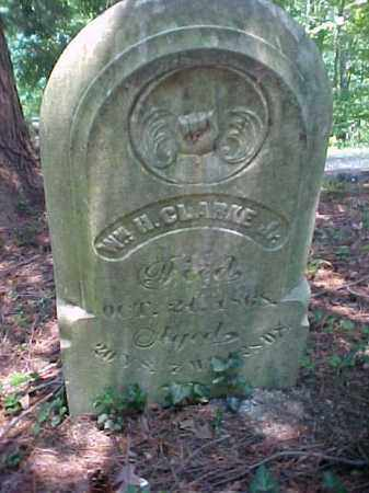 CLARKE, WILLIAM H. - Meigs County, Ohio | WILLIAM H. CLARKE - Ohio Gravestone Photos