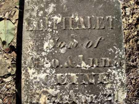 CLINE, ELIPHALET - Meigs County, Ohio | ELIPHALET CLINE - Ohio Gravestone Photos