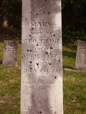 CLINE, MARY - Meigs County, Ohio | MARY CLINE - Ohio Gravestone Photos