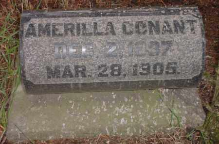 CONANT, AMERILLA - Meigs County, Ohio | AMERILLA CONANT - Ohio Gravestone Photos