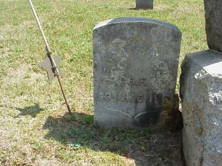 CORNELL, GEORGE - Meigs County, Ohio | GEORGE CORNELL - Ohio Gravestone Photos