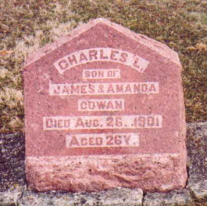 COWAN, CHARLES L. - Meigs County, Ohio | CHARLES L. COWAN - Ohio Gravestone Photos