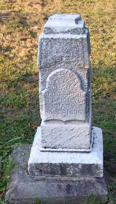 CRARY, JAMES L. - Meigs County, Ohio | JAMES L. CRARY - Ohio Gravestone Photos