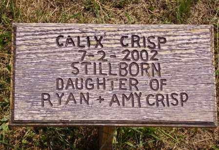 CRISP, CALIZ - Meigs County, Ohio | CALIZ CRISP - Ohio Gravestone Photos
